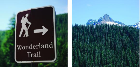 Wonderland Trail 2 pic